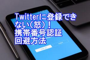 Twitterに登録できない(怒)!携帯電話番号なし・回避する方法